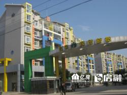 绿色新都 精装3房2厅2卫 带200平方大露台 老证诚售