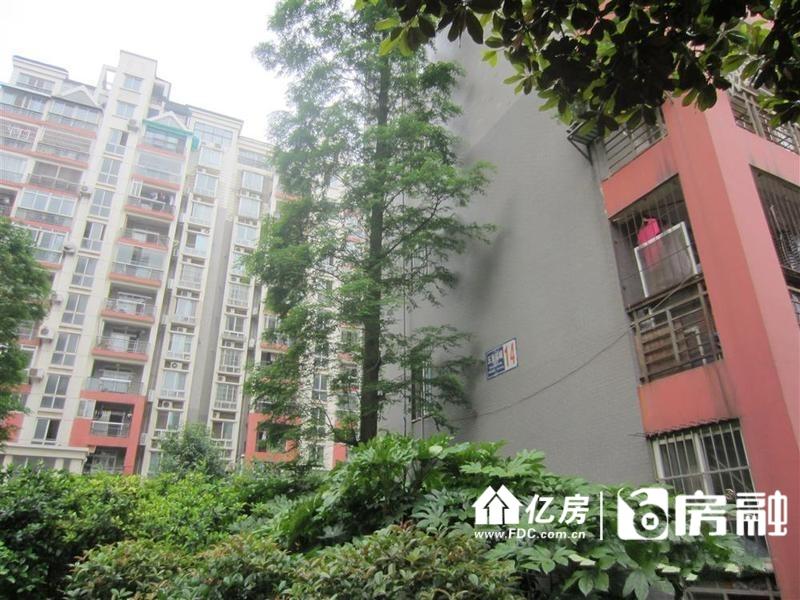 看房提前联系,武汉汉阳区钟家村汉阳汉阳大道317号二手房3室 - 亿房网