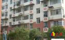 青山区 红钢城 碧苑花园 1室1厅1卫  48.22㎡