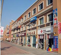 东风新城商业广场商铺
