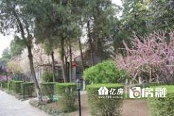 徐东核心 学区房