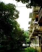 顺鑫公寓 老证 后期低,武汉江岸区二七江岸片区二七街顺鑫公寓二手房2室 - 亿房网