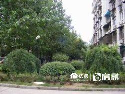 东西湖区 常青花园四小区 3室1厅1卫92.0㎡