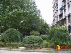 常青花园四小区