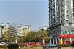 武昌区 南湖 中央花园 4室2厅2卫 256平米