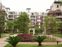 东湖高新区 大学科技园 当代国际花园 2室1厅1卫 79㎡
