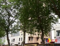 青山区 建二 武汉科技大学50街 2室1厅1卫  70㎡  双学区房   南北户型  个税  有钥匙