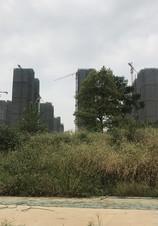 绿地国际理想城