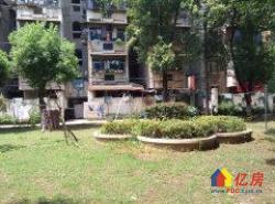 南湖花园宁静苑,新房源,满五唯一,学区房,中间楼层,
