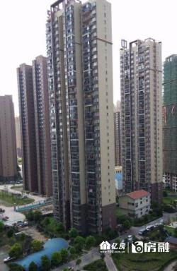 中民长青国际毛坯四房出租
