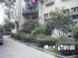 绿色家园  三房两厅两卫     老证  顶楼复式楼