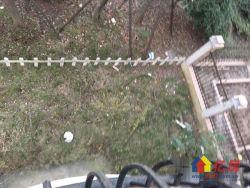 汉南碧桂园浅月湾组团,西把头,整个花园都能晒到太阳;花园200