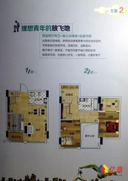 新洲区 阳逻片 阳逻财富广场 3室2厅2卫 48.21㎡