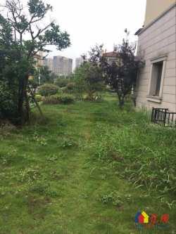 碧桂园生态城水蓝湾 6室3厅5卫   临湖 送170平花园  黄金位置