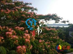 花香满园可观湖景 中国院子半山挂端头占地1000平带双车库1188万