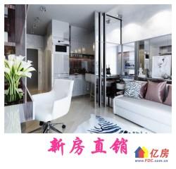 洪山区仁和路地铁上盖小户型公寓 12万方商业体 一期商铺商业已全线开业