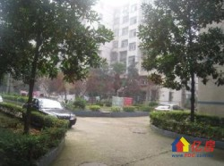 森林公园对面   关东康居园 2室2厅1卫  77㎡  98万