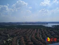 光谷碧桂园生态城 精装三房两厅两卫 楼层好 可以看湖真实房源
