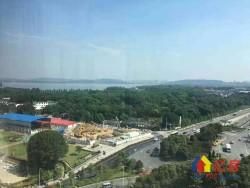 东湖天下  一线湖景房  视野永无遮挡  257平大户型  超大阳台