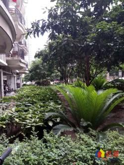江岸区 惠济 解放社区 3室1厅1卫 性价比超高的房子
