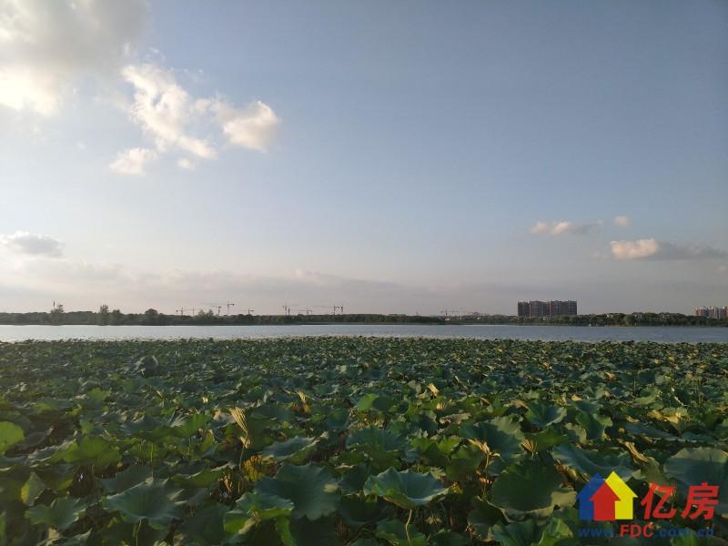 送花园600平米花园大且集中大门朝南,武汉蔡甸区中法新城武汉经济开发区知音湖大道与天鹅湖大道交汇处二手房5室 - 亿房网