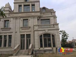 世贸龙湾349平独栋别墅不限购 500平送800㎡花园300平地下室及多个露台