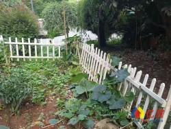 挂东角通透两房,满5唯一,送40平花园