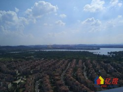 碧桂园生态城 观澜 大三房 湖景房 单价低 仅此一套