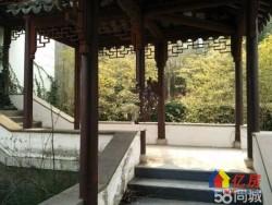 独家:黄陂区 盘龙城 山水龙城中国院子 半山大独栋 占地1200平 仅售1000万