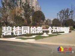 碧桂园蜜柚,层高54米,送一层,高端公寓,认购立减