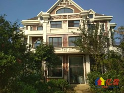 此房只应天上有  人间难得几回寻  一线临湖独栋别墅  送5000平私家大花园