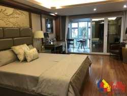 汉口内环青年路新房,武广 国广 四大商圈,5.4米复式 带天然气阳台