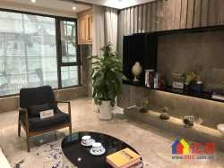 中法生态城+5.4米公寓+带烟道天然气+4号线延长线地铁口