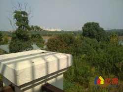 小薛推荐  纯属精品  一线临湖独栋别墅  上下四层  户型大气  送5000平私家大花园
