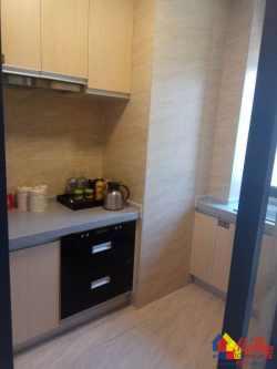 新房:东西湖庭瑞新汉口+5.4Mloft+D铁旁+多户型可选