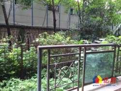 汉阳 鹦鹉鹦鹉花园 1室1厅1卫 老证