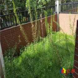 江大旁联投金色港湾 叠墅使用面积300平 带花园