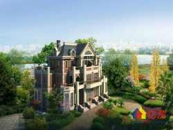 世茂龙湾一线临湖独栋别墅  全新毛坯  两证在手  带超大私家花园  低于市价600万