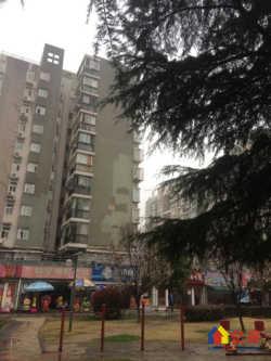 徐东丽华苑 精装两房 户型方正 采光好 总价低 业主诚心出售
