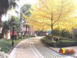 江汉北路 协和医院  福星城市花园 负2 楼车位 产证齐全 随时看