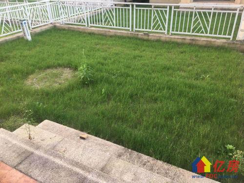 汉南诚意旁业主城联排别墅红本在手政府绿地有怎么办别墅区蛇图片