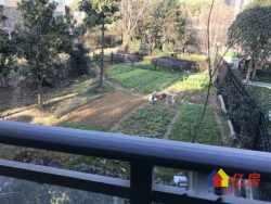 保利心语 临湖双拼别墅 花园面积300平 旁边就是公园!