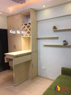 银泰御华园 一室一厅精致小户型 对口育才小学 地铁好房低总价
