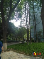硚口区 宝丰 凌云小区 3室1厅1卫 98.24㎡,武汉硚口区宝丰硚口区宝丰街建设大道二手房3室 - 亿房网
