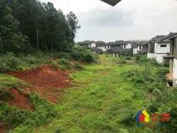 一手新房中国院子超大独栋 占地两亩 无后期