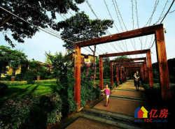 江南风情 中式庭院别墅 千年美丽 豪装独栋 花园600平