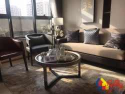 汉口新房,白金壳子,三条地铁在门口,武汉客厅配套齐全