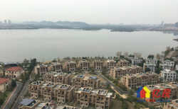 一线湖景 湖墅观止空中别墅  使用面积230多 送双露台