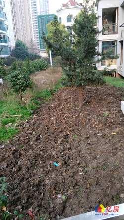 永旺旁中一花园 精装两房南北通透全明户型 性价比高
