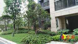 青山区  建一路  石化小区   中装  个税  南北户型  59街坊 2室1厅1卫  63㎡